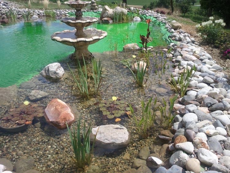 R alisations etang bache bache pvc sur mesure de for Bache pour bassin a poisson gamm vert